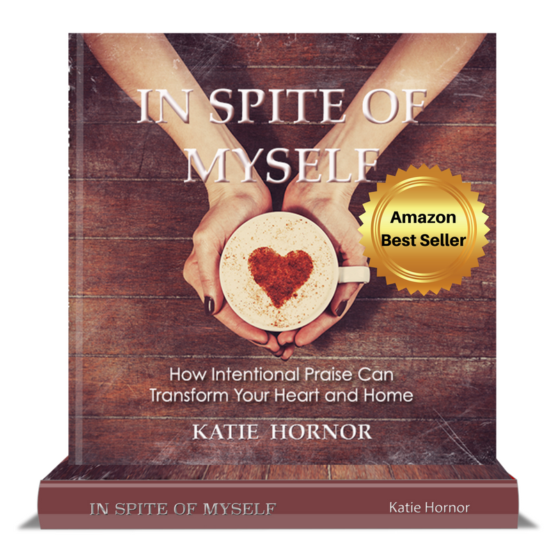 In spite of myself by Katie Hornor inspiteofmyselfbook.com